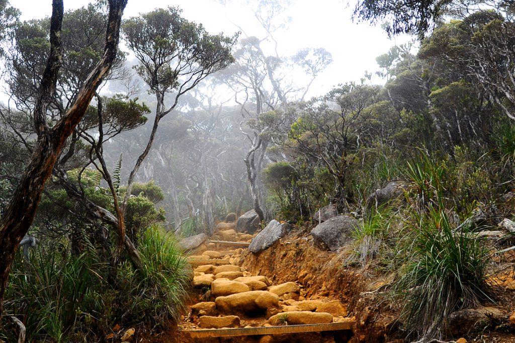 Mount Kinabalu Route